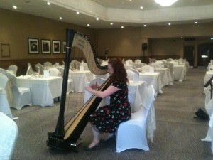 Harp Music for Mothers Day 2014
