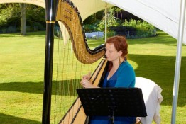 Testimonials: Harp music for summer party at Dunham Massey