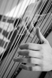 Testimonials: A close up of hands on harp