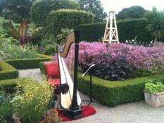 Testimonials: Harp set up in stunning gardens for an outdoor autumn wedding