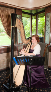 Rachael Gladwin harpist at The Peacock Room